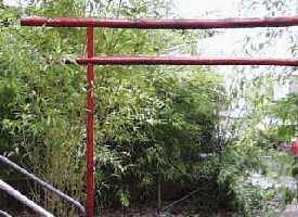 Der Bambusgarten lädt zu geselligen Grillabende nach dem Training ein